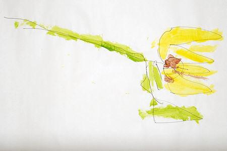 sunflower_5-450.jpg